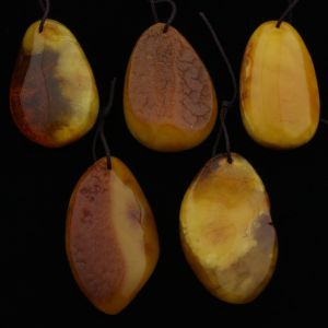 Natural Baltic Amber Pendant Set of 5pcs. 28gr. PS11