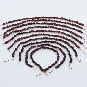 Natural Baltic Amber Loose Beads Strings Set of 10pcs. 22gr. ST1019
